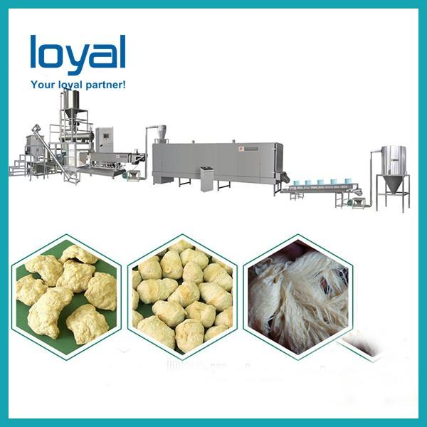 Corn Flakes Cereal Snacks Food Frying Chips Making Machine Pellet Food Double Screw Puff Feed Cheese Ball Processing Extruder Artificial Rice Soyabean Price #3 image