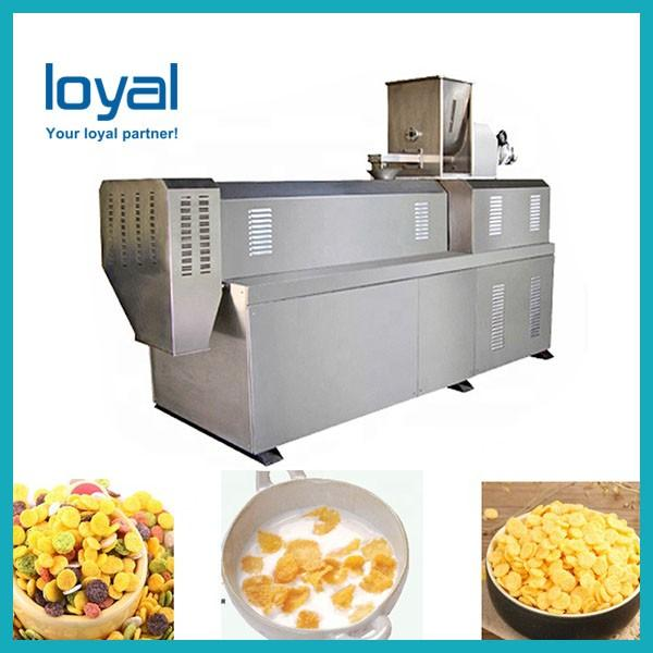 Best price special discount chocos sweet corn flakes making machine #1 image